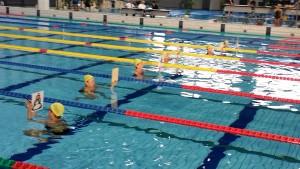 日本泳法水書